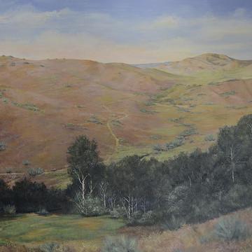Boise Idaho Collection