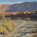 Borrego Desert California Collection