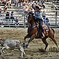 Breakaway Roping Collection