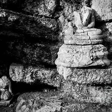 Broken Buddha Collection