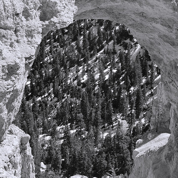 Bryce Canyon - BW Collection