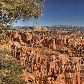 Bryce Canyon Collection