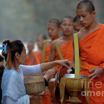 Buddha and Buddhism Collection