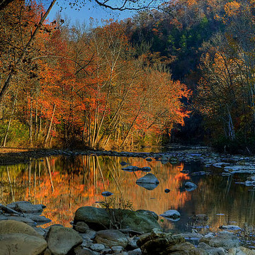 Buffalo River Landscapes Collection