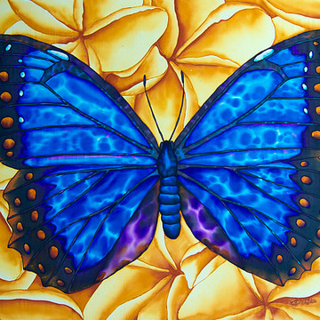 Butterfly  and Beetle Silk Paintings Collection