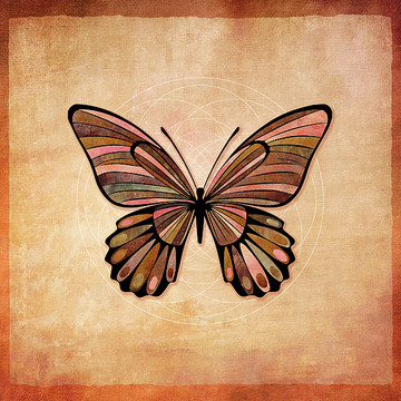 Butterfly Series