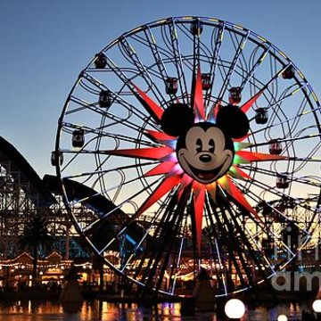 California Adventure Disneyland Collection