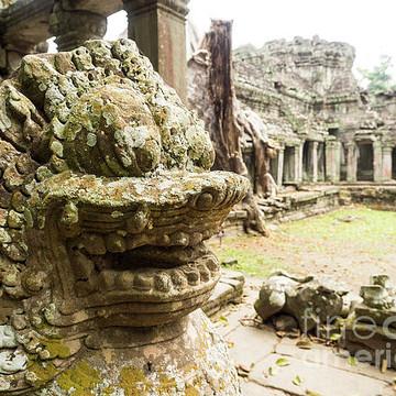 Cambodia - Preah Khan Temple Collection