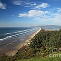 Cape Lookout State Park - Oregon Collection