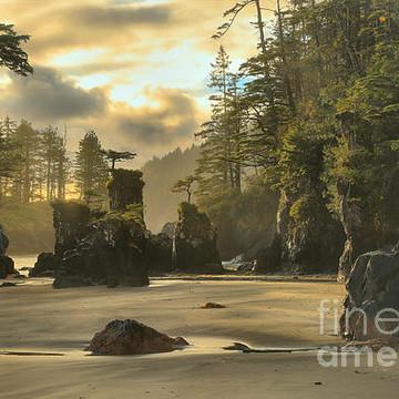 Cape Scott Provincial Park - Vancouver Island - British Columbia - Canada Collection