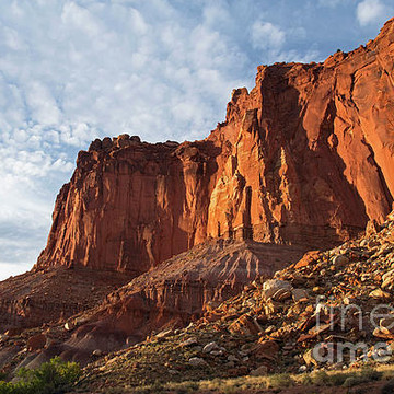 Capital Reef National Park Collection