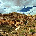 Capitol Reef National Park Collection