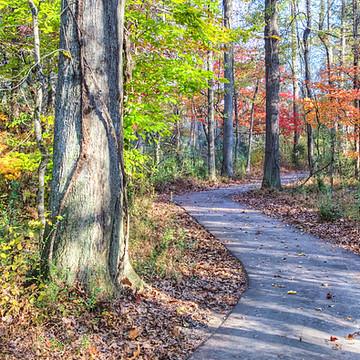 Carolina Thread Trail Collection