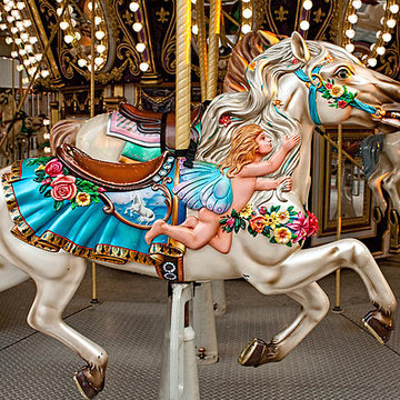 Carousels Collection