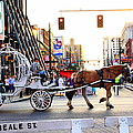 Carriage Rides Collection