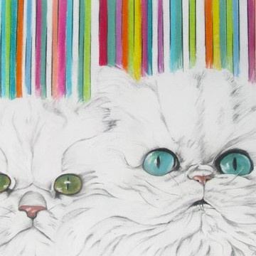Cat Gallery Collection