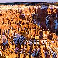 Cedar Breaks National Monument Collection