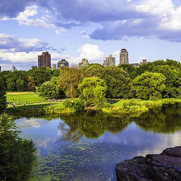 Central Park - NYC Collection