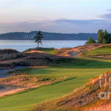 Chambers Bay Golf Course Collection