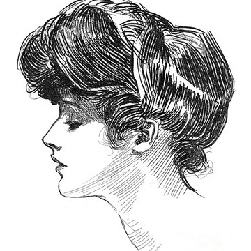 Charles Dana Gibson Collection