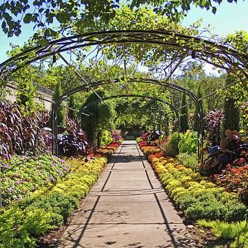 Cheekwood Botanical Gardens Collection