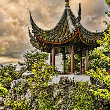 Chinese Garden Collection