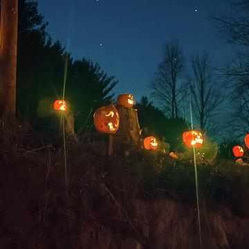 Cilley Hill Pumpkin Glow Collection