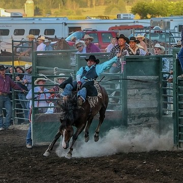 Clayton Rodeo Collection