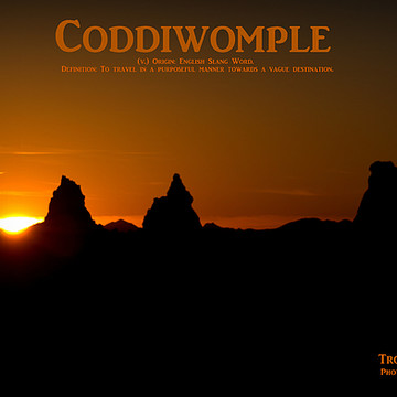 Coddiwomple Collection