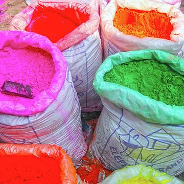 Color Bazaar - Holi Market Collection