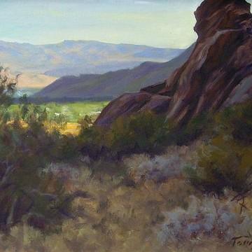 Colorado Desert California Collection