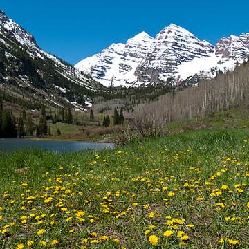 Colorado Spring Landscapes Collection