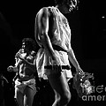 Concert Photography Collection