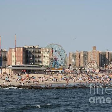Coney Island Portfolio Collection