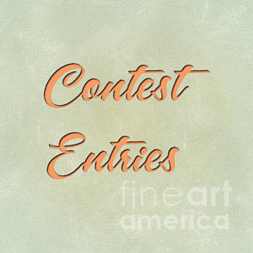 Contest Entries Collection