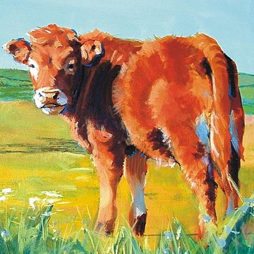 Cow Paintings Collection