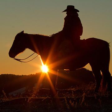 Cowboys Collection