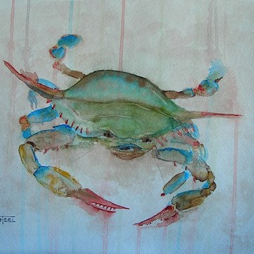 Crabs Collection