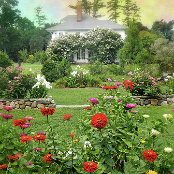 Crawford Park Rye Brook NY Collection