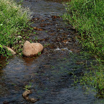 Creeks and Streams Collection