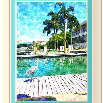CUSTOM Digital Frames Collection