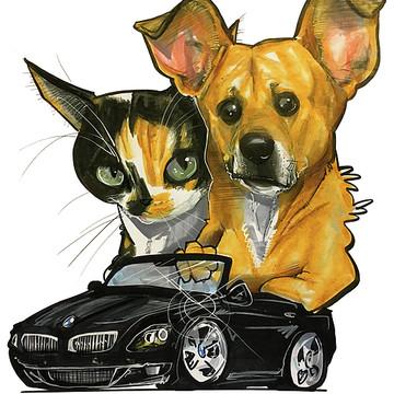 Custom Pet Portraits Collection