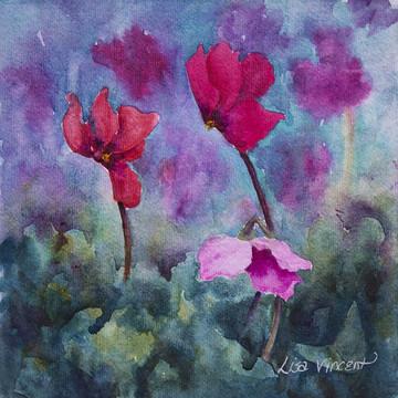Cyclamen Florals