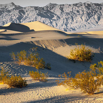 Death Valley NP Collection