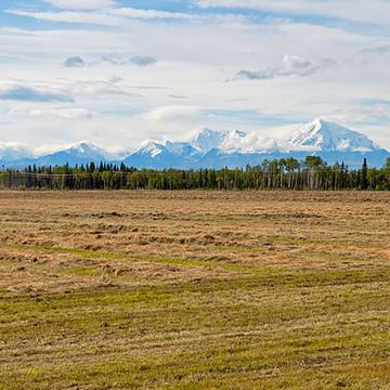 Delta Junction Alaska Collection