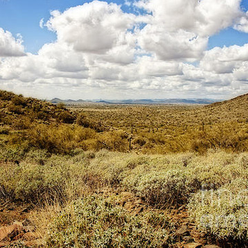 Desertscapes and Views