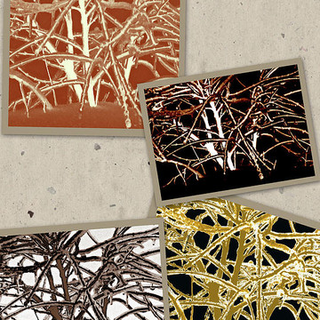 Designer Series Collection