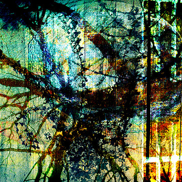 Digital Collage Collection