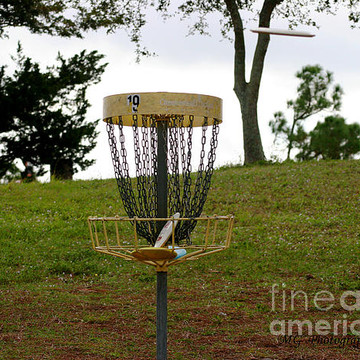 Disc Golf Collection