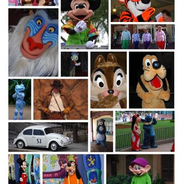 Disney Photographs Collection
